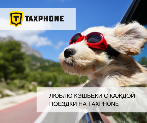 Taxphone Mobile App